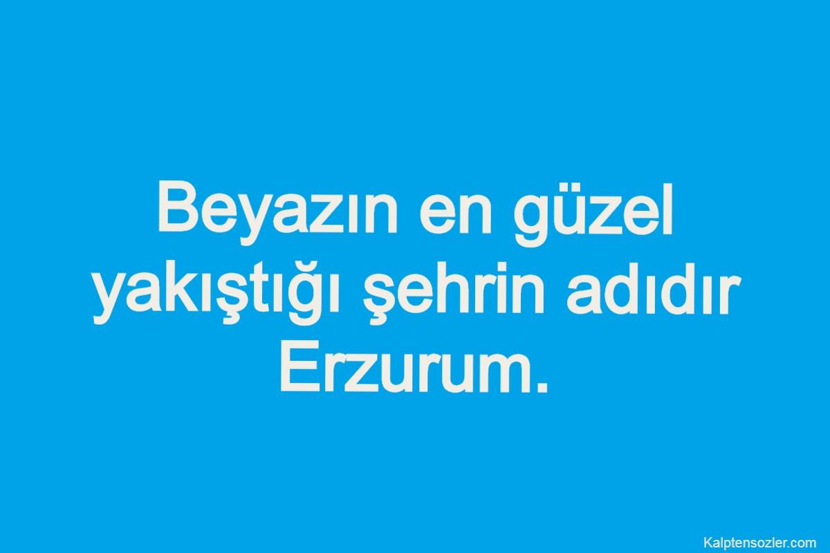 Erzurum ile İlgili Sözler